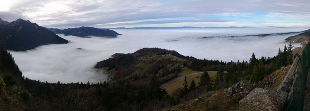 brouillard 67